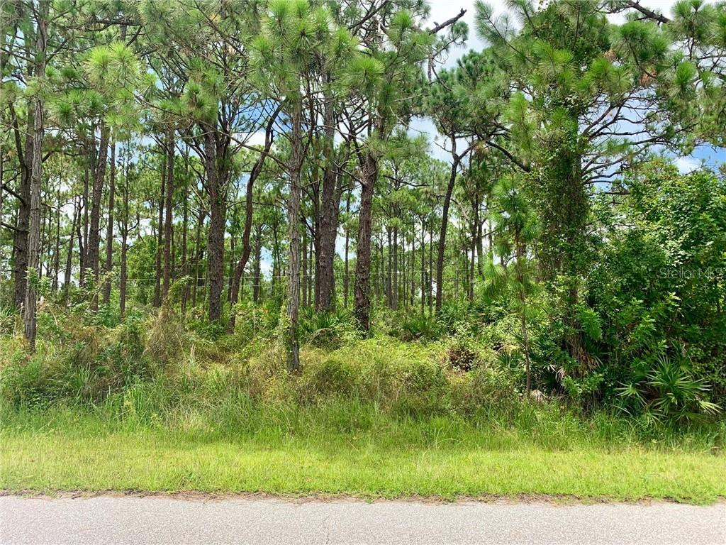 5237 CHANEY TER Property Photo