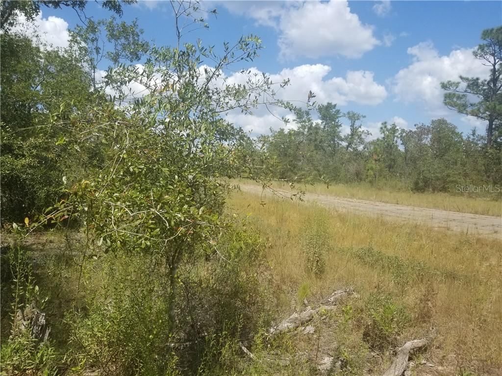 DEVONSHIRE R Property Photo - CHIPLEY, FL real estate listing