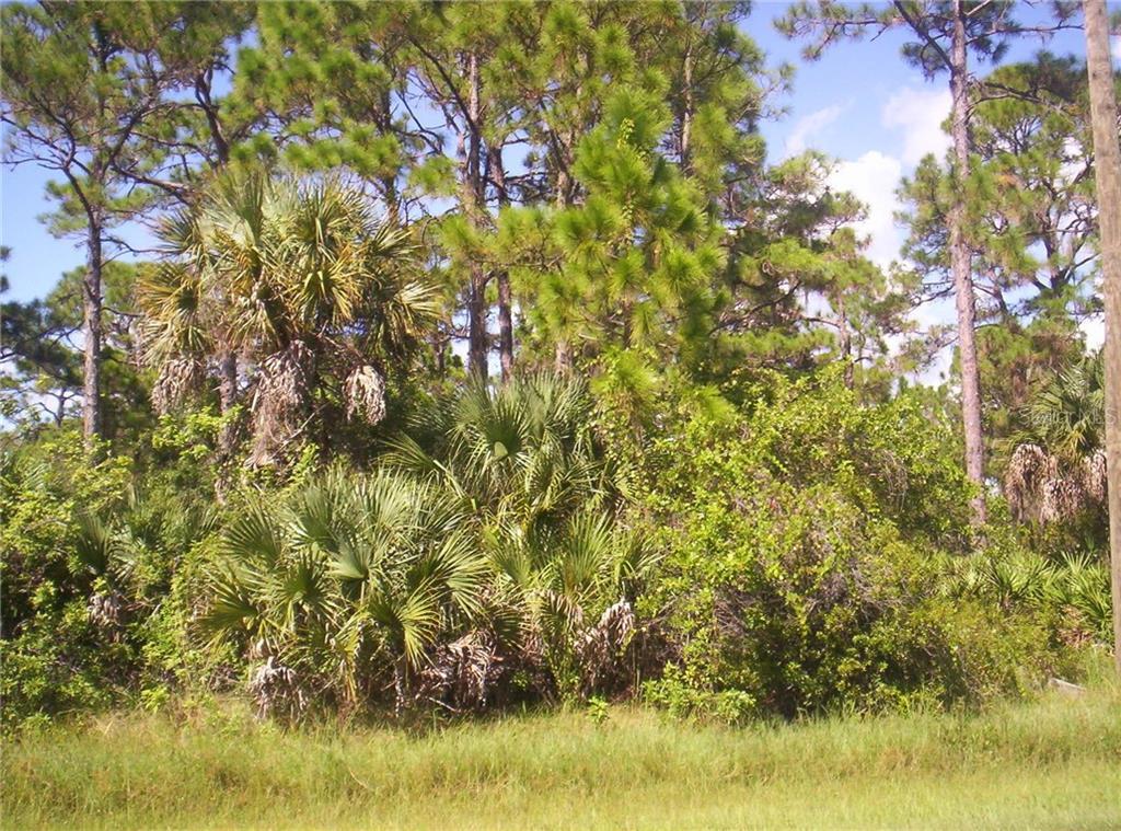 5867 DAVID BOULEVARD Property Photo
