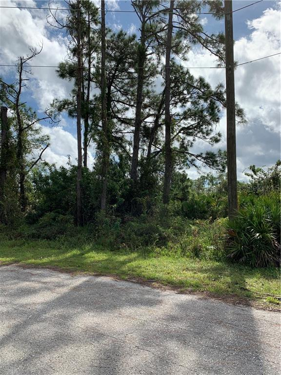 862 CHARLES SISE ST E Property Photo - LEHIGH ACRES, FL real estate listing
