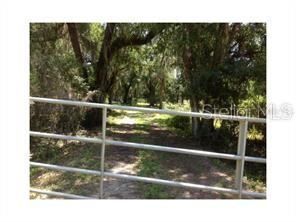 PINE LEVEL ROAD Property Photo - ONA, FL real estate listing