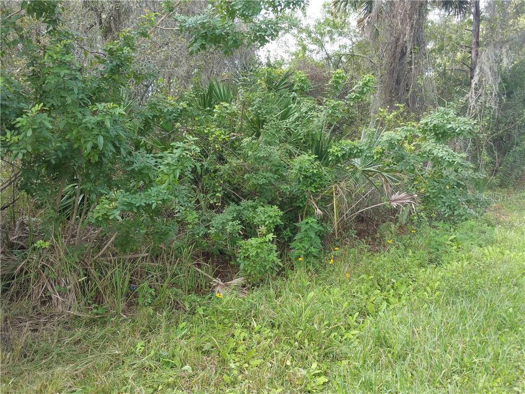 417 DICKERSON STREET Property Photo - PT CHARLOTTE, FL real estate listing