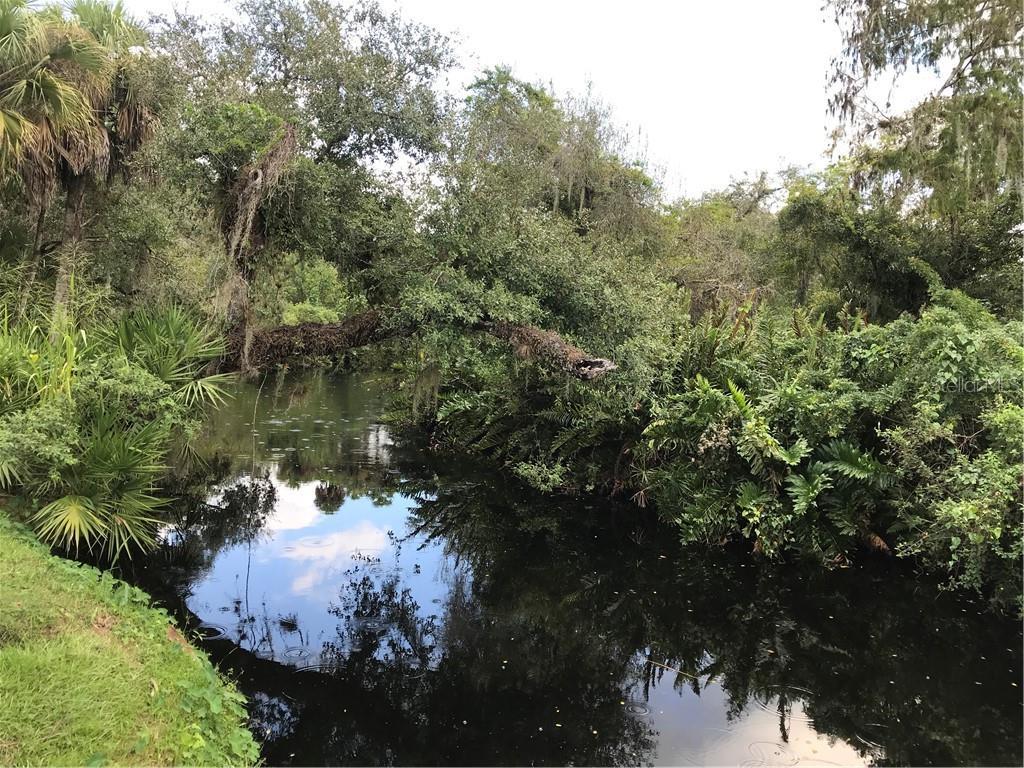 20011 Cypress Creek Drive Property Photo