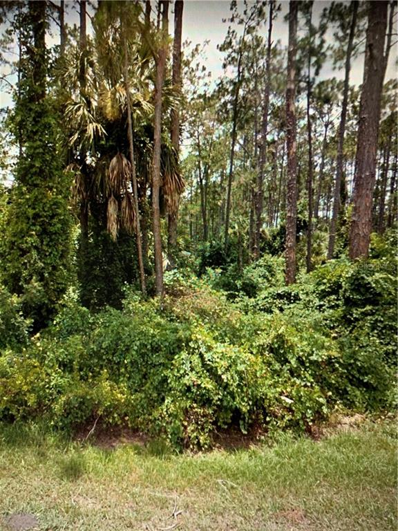 26 RIPCORD LANE Property Photo - PALM COAST, FL real estate listing
