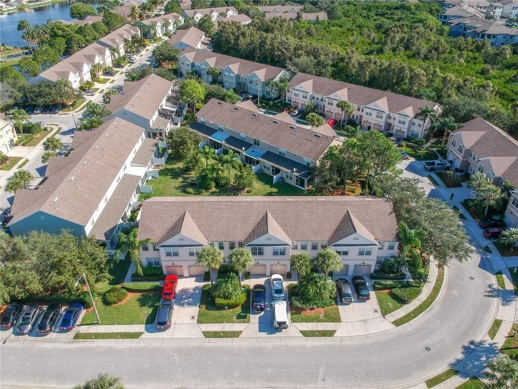 541 BLACK LION DR NE Property Photo - ST PETERSBURG, FL real estate listing