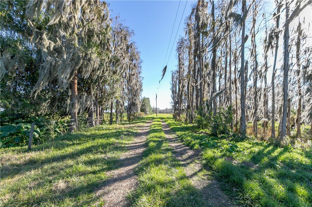 1930 FISH BRANCH RD Property Photo - ZOLFO SPRINGS, FL real estate listing