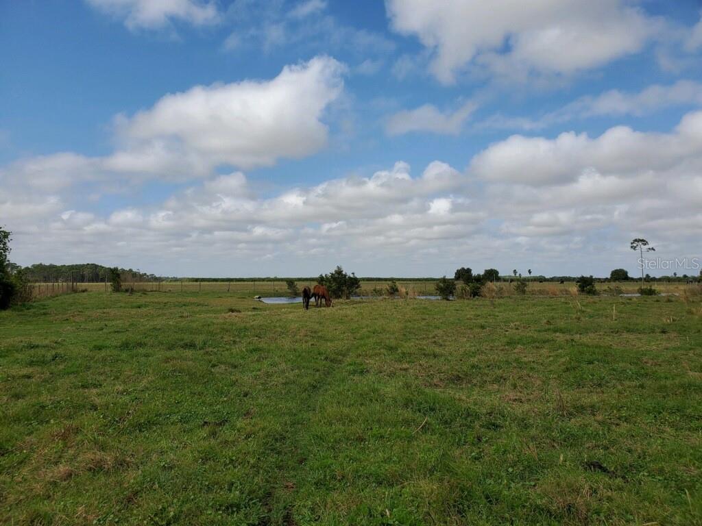 189 PARK LAND DRIVE Property Photo - LAKE PLACID, FL real estate listing