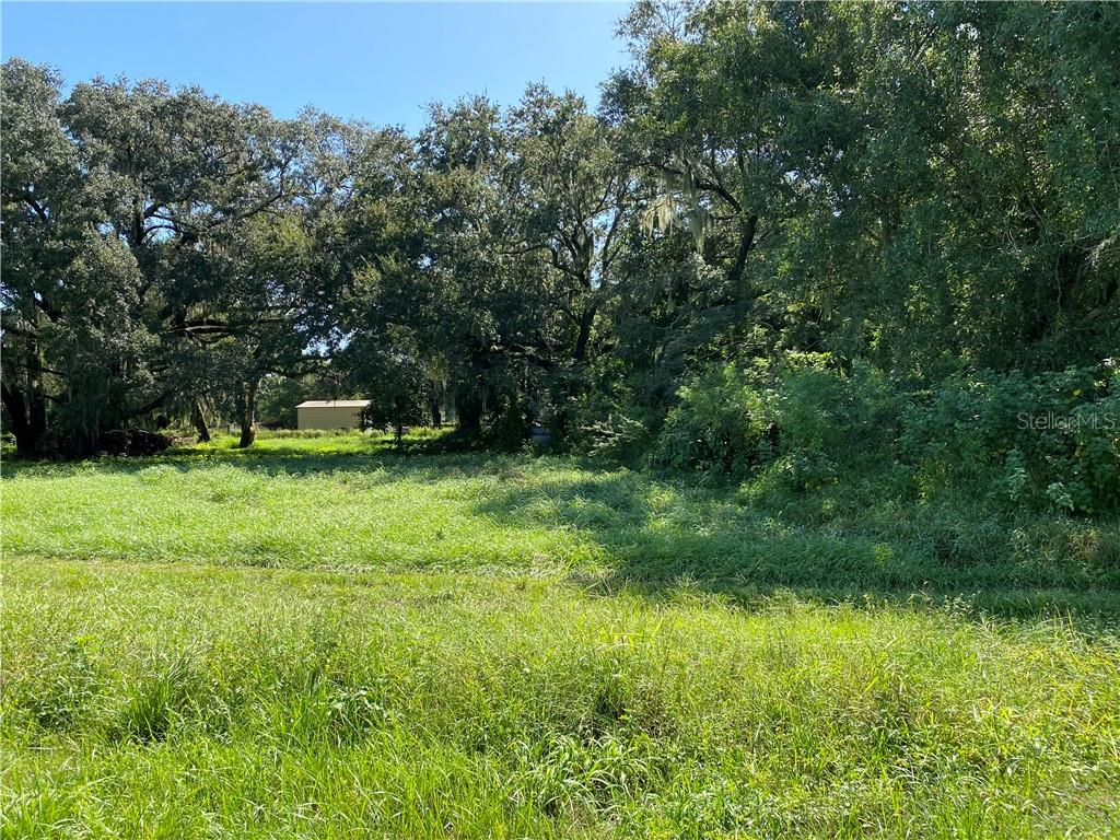 S US HWY 17 Property Photo - ZOLFO SPRINGS, FL real estate listing