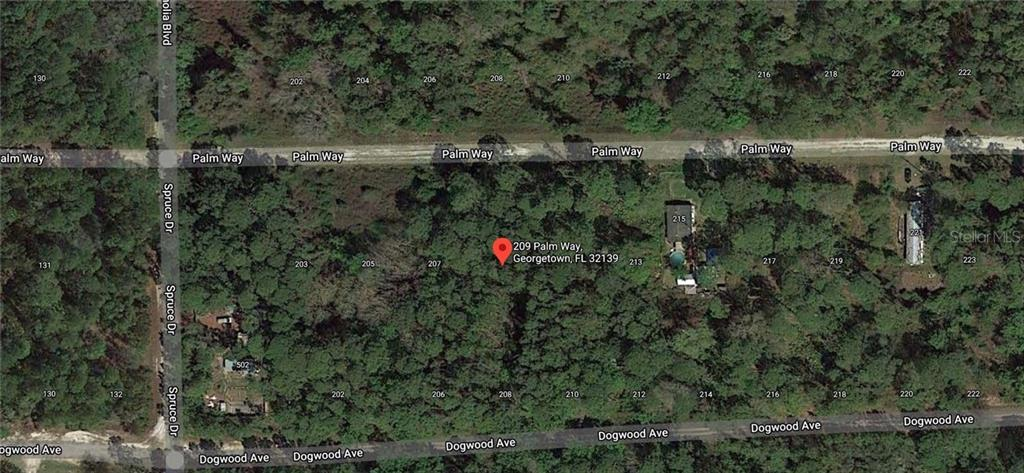 209 PALM WAY Property Photo - GEORGETOWN, FL real estate listing