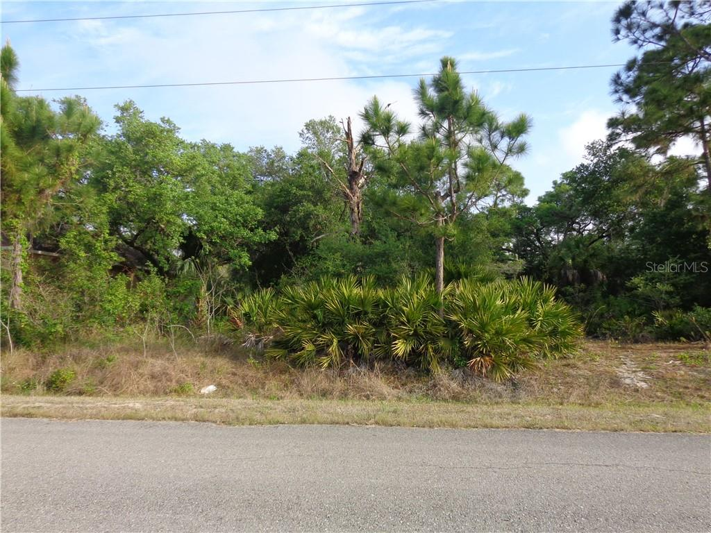 2403 JETRIDGE STREET Property Photo - ALVA, FL real estate listing