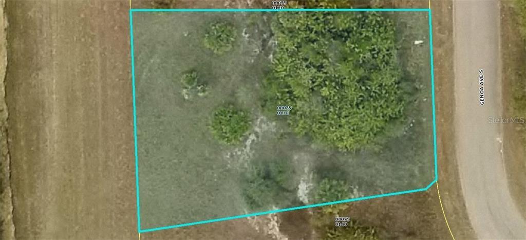 1272 GENOA AVENUE Property Photo - FORT MYERS, FL real estate listing