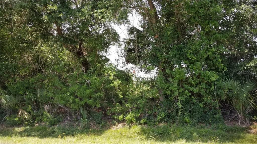 22342 Priscilla Avenue Property Photo