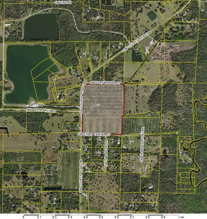 9301 SW FORT WINDER STREET Property Photo - ARCADIA, FL real estate listing