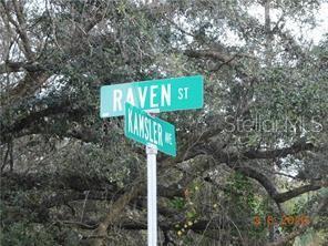 Raven Street Property Photo