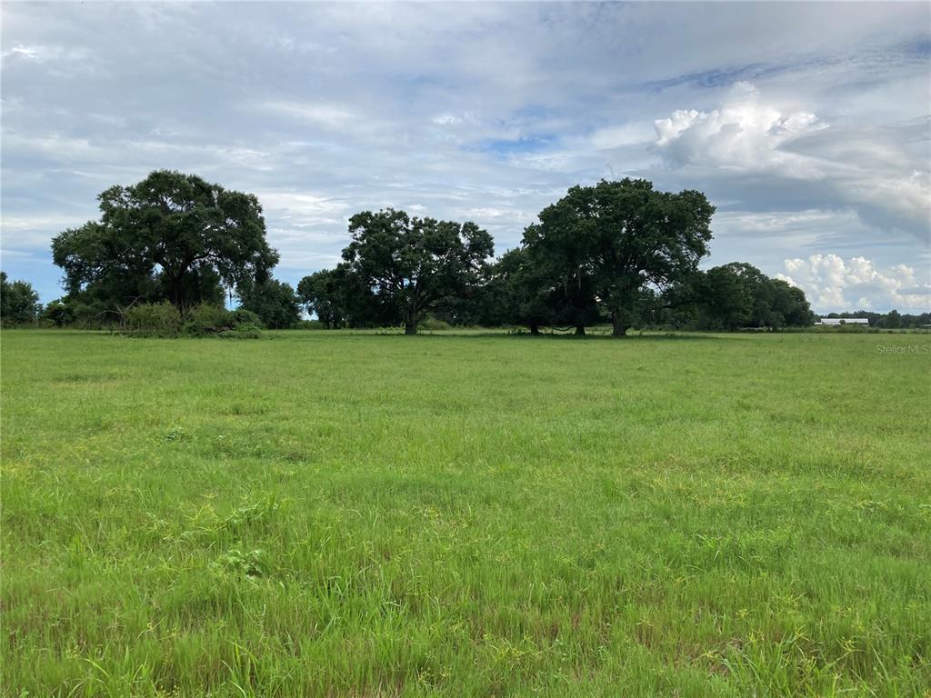 Pine Level Road Property Photo