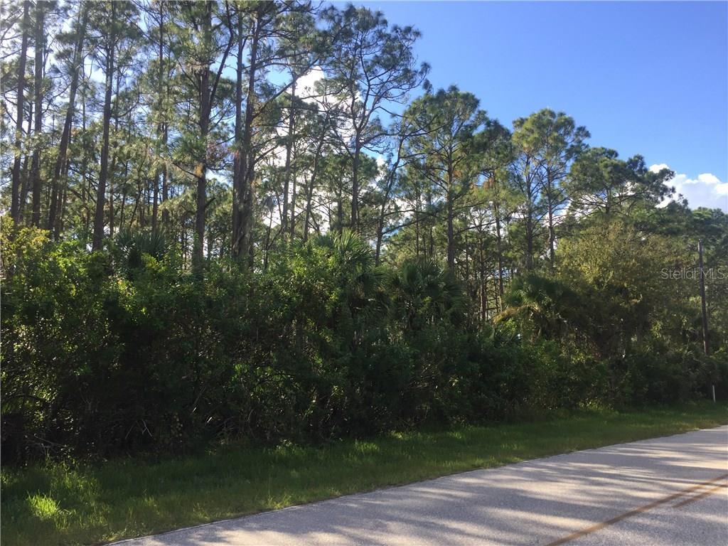 12365 CHAMBERLAIN BLVD Property Photo