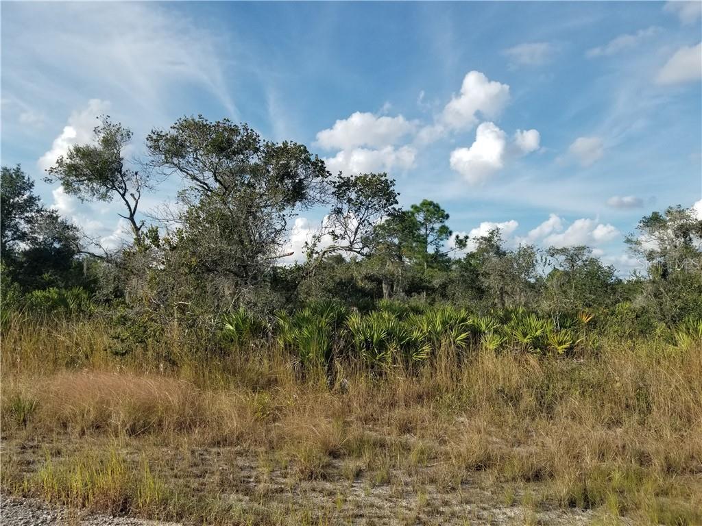 3543 MARIANA AVE Property Photo - LAKE PLACID, FL real estate listing