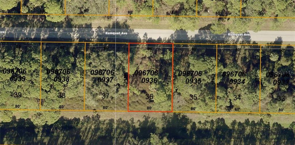 Lot 36 Kumquat Avenue Property Photo