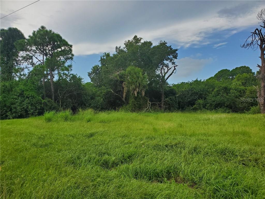 181 W PINE VALLEY LANE Property Photo