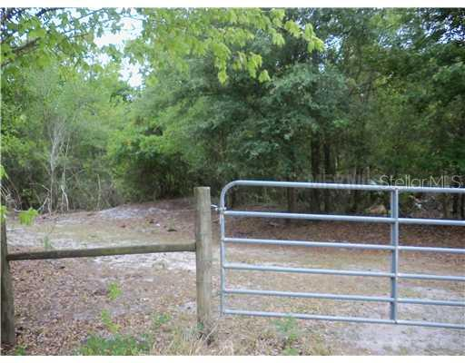 NE BROWNVILLE STREET Property Photo - ARCADIA, FL real estate listing