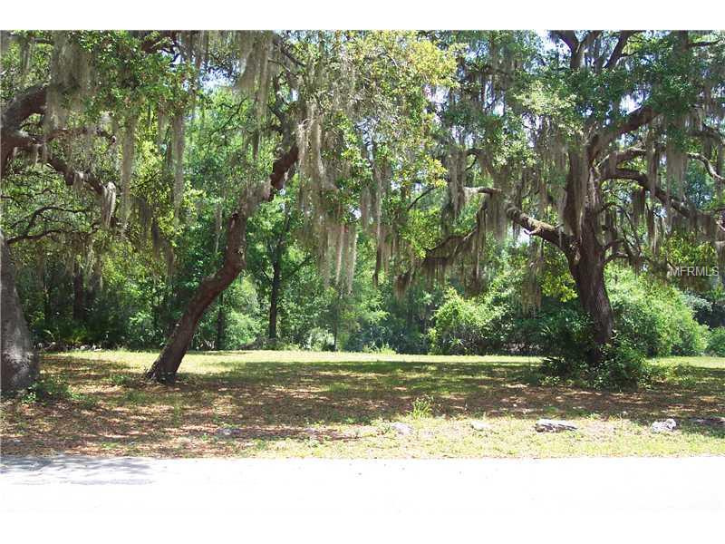 Property Photo - LAKE PANASOFFKEE, FL real estate listing