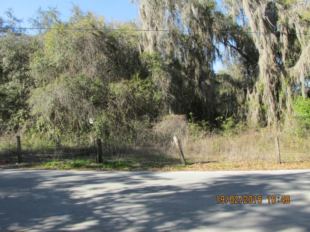 CR 464 Property Photo - LAKE PANASOFFKEE, FL real estate listing