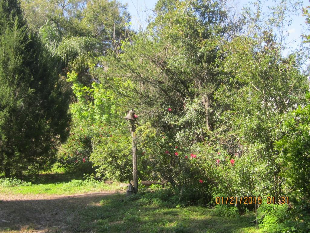 Off Water Road Property Photo