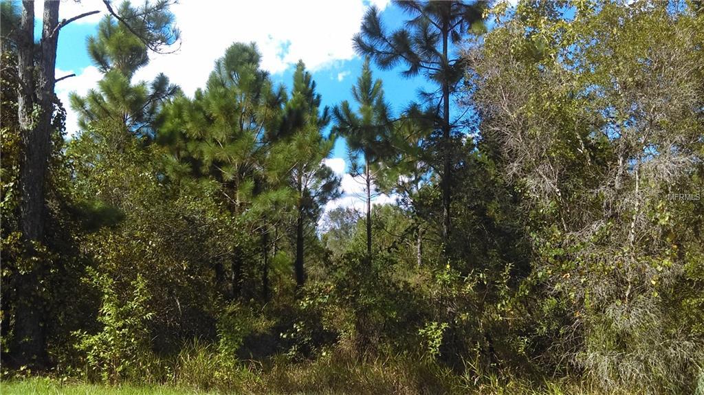 Salyer's Road Property Photo