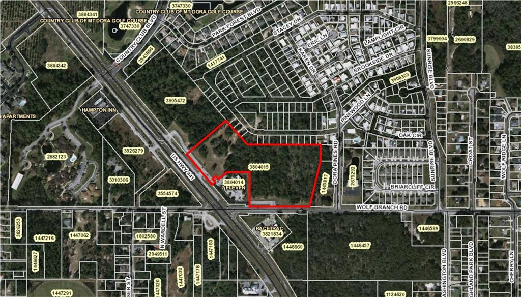 US HWY 441 & WOLF BRANCH ROAD Property Photo - MOUNT DORA, FL real estate listing