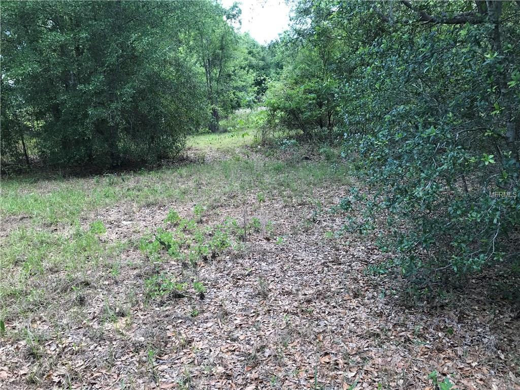 CAMP RD Property Photo