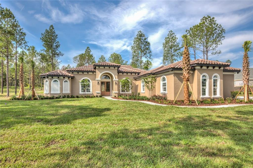 236 TWO LAKES LN Property Photo - EUSTIS, FL real estate listing