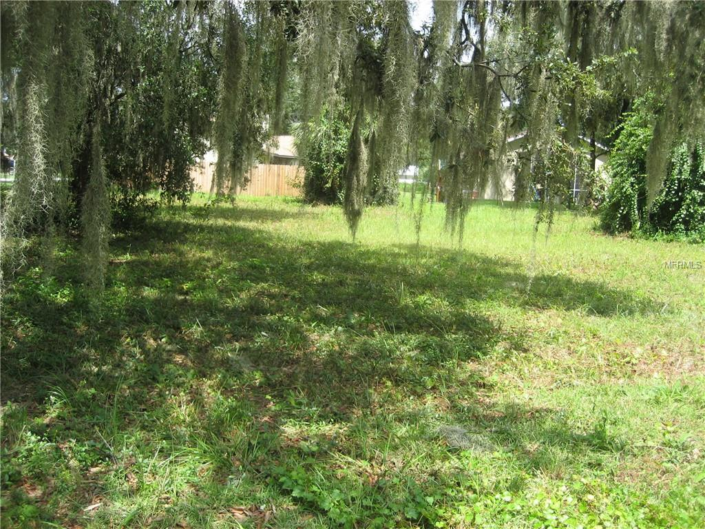 COUNTY ROAD 467 Property Photo - LAKE PANASOFFKEE, FL real estate listing