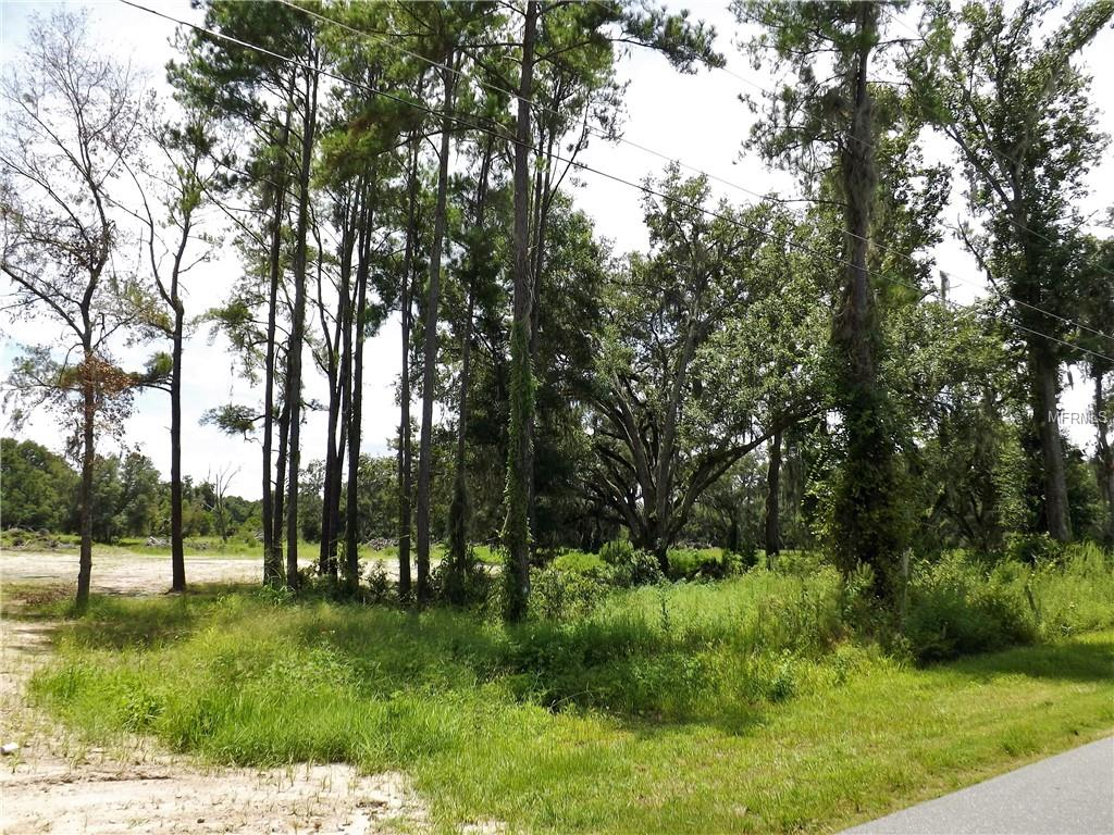 5653 COUNTY ROAD 181 Property Photo - WILDWOOD, FL real estate listing