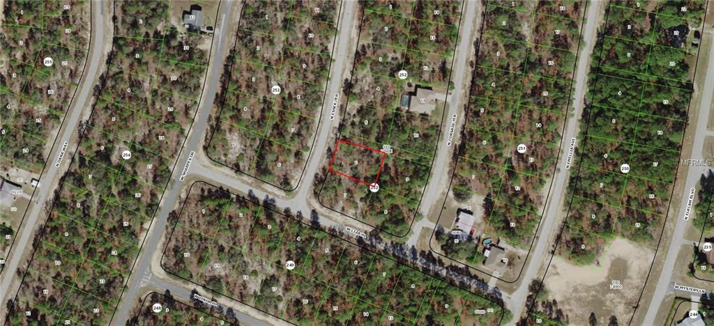 9851 N Essex Terrace Property Photo
