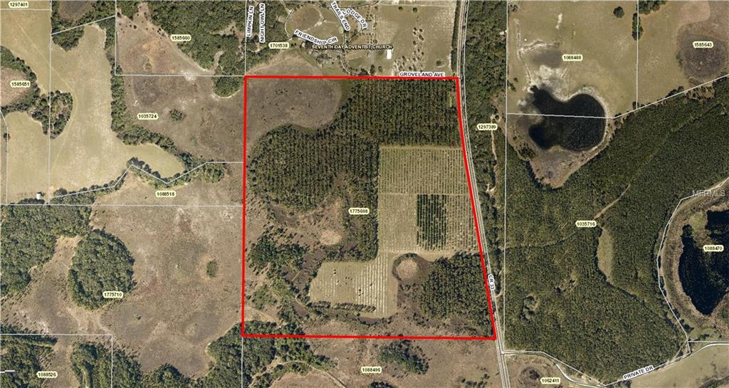 GROVELAND (CR 33) AVE Property Photo - GROVELAND, FL real estate listing