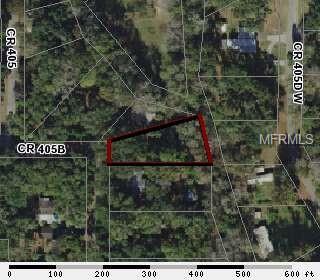CR 405B Property Photo - LAKE PANASOFFKEE, FL real estate listing