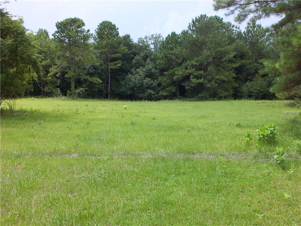 0000 NW 162ND CT. Property Photo - MORRISTON, FL real estate listing