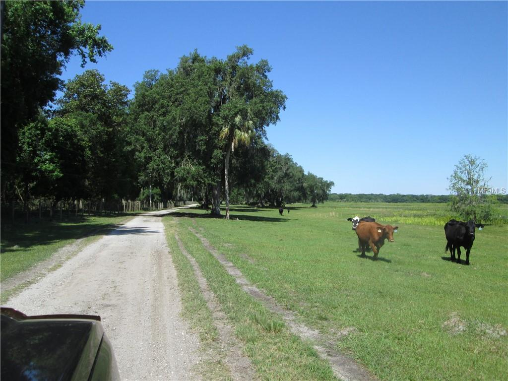 7423 70TH ROAD Property Photo - BUSHNELL, FL real estate listing