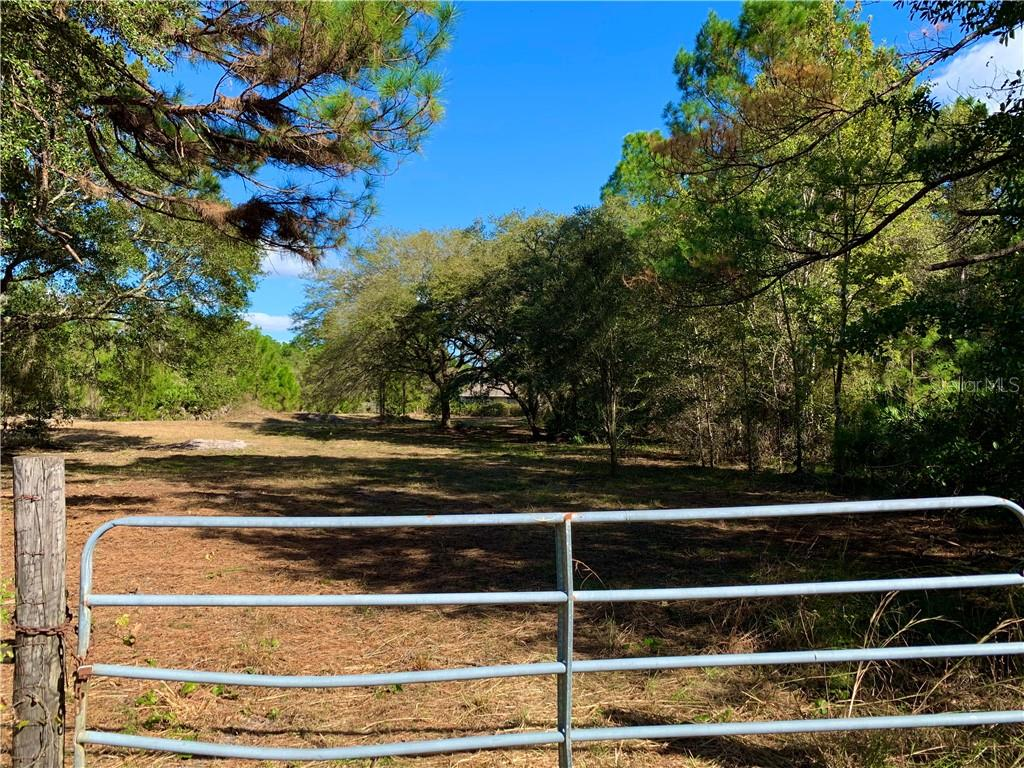 Lot 4 TAMARAC STREET Property Photo