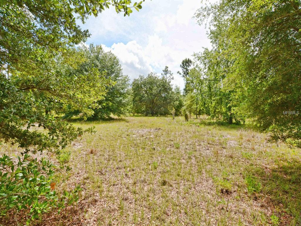 BLUE SINK RD Property Photo - HOWEY IN THE HILLS, FL real estate listing
