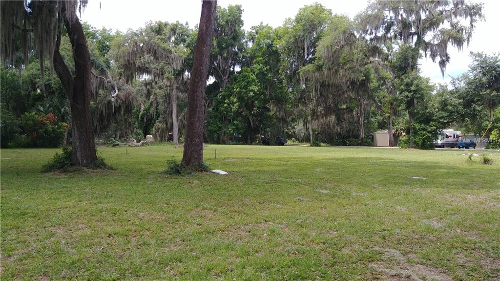 COUNTY ROAD 449 Property Photo - LAKE PANASOFFKEE, FL real estate listing