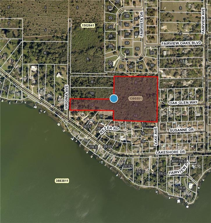 VIRGINIA AVE Property Photo - TAVARES, FL real estate listing