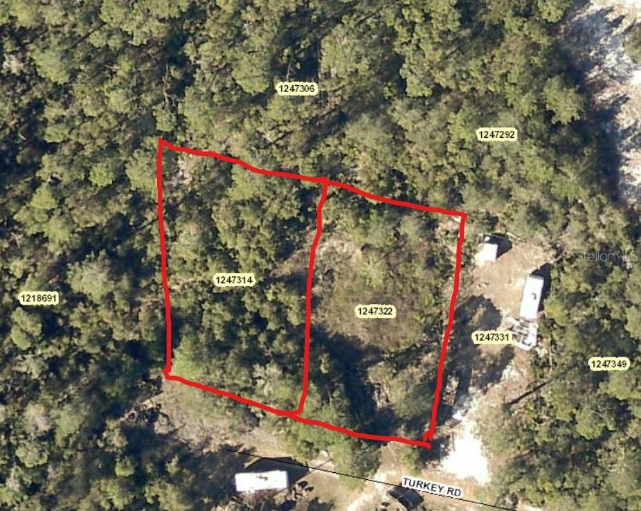 TURKEY RD Property Photo - ALTOONA, FL real estate listing