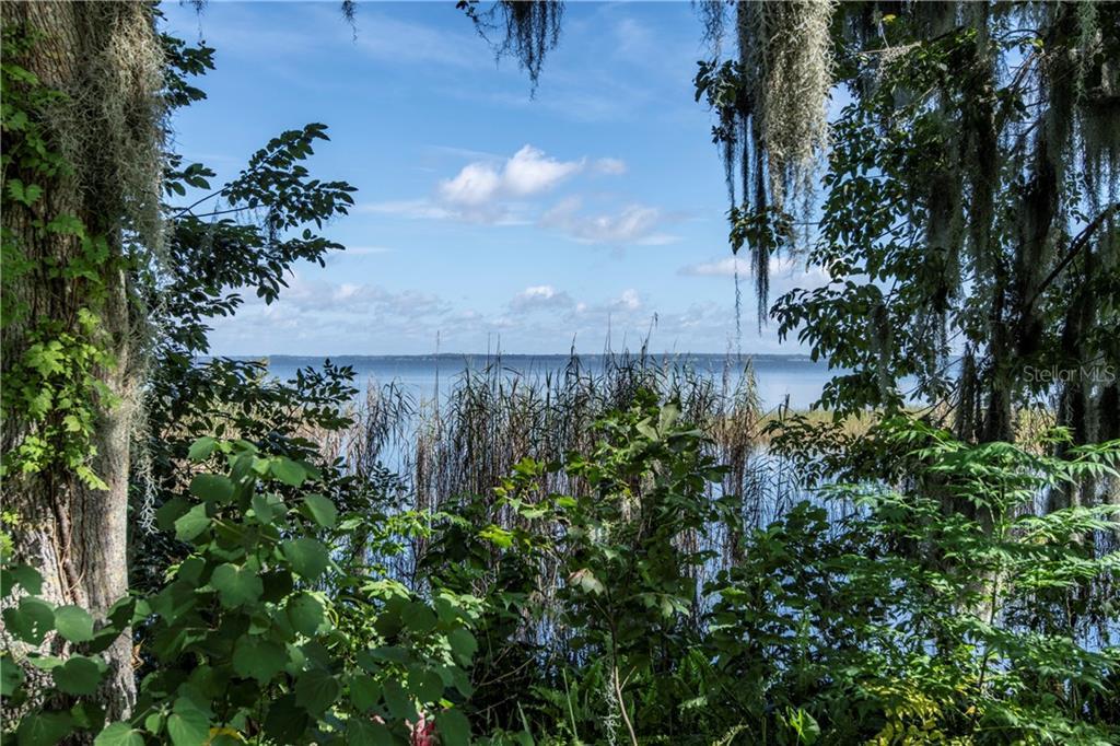 LAKESHORE DRIVE, YALAHA, FL 34797 - YALAHA, FL real estate listing
