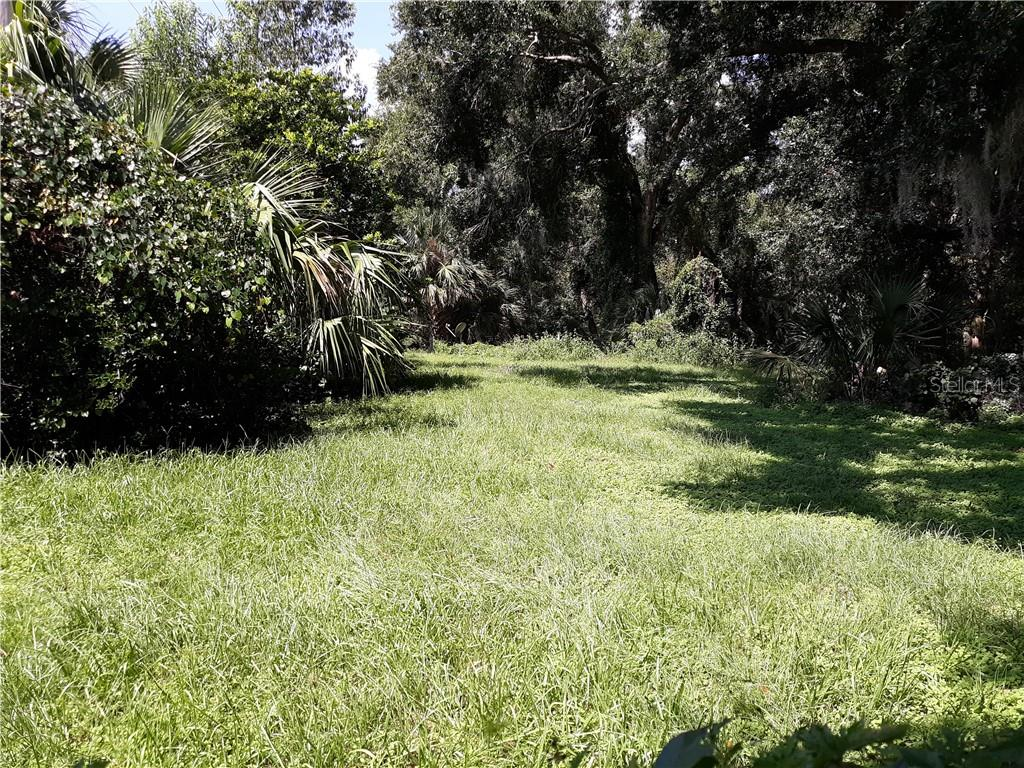 00 S FISH CAMP RD RD Property Photo - GRAND ISLAND, FL real estate listing