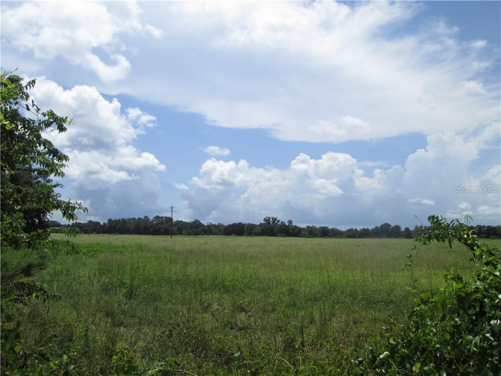STATE ROAD 471 & COUNTY R STATE ROAD 471 & COUNTY RD 721 Property Photo - WEBSTER, FL real estate listing