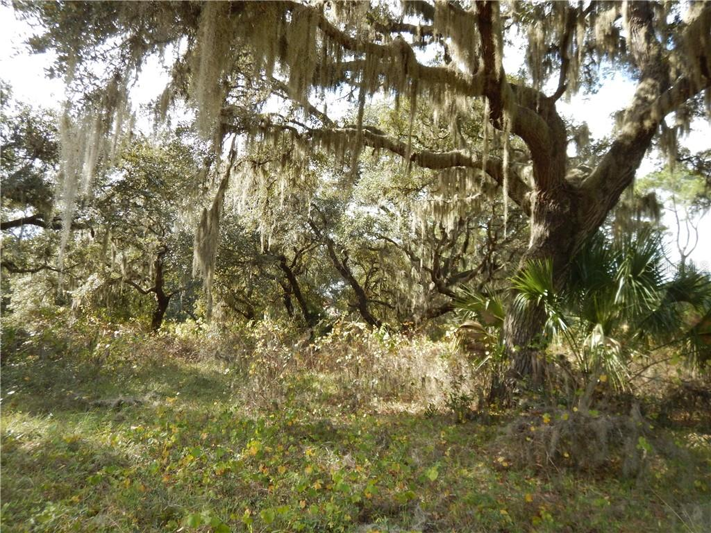 Silent Ridge (lot #54) Drive Property Photo