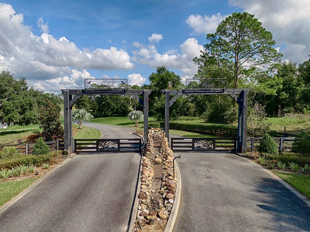 41509 SADDLE RIDGE LANE Property Photo - WEIRSDALE, FL real estate listing