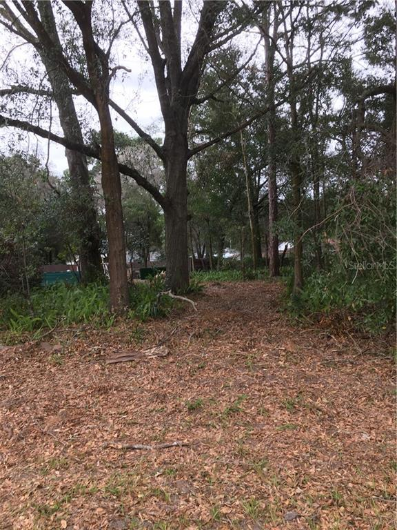 70th Avenue Road SE 70TH AVENUE ROAD Property Photo - BELLEVIEW, FL real estate listing