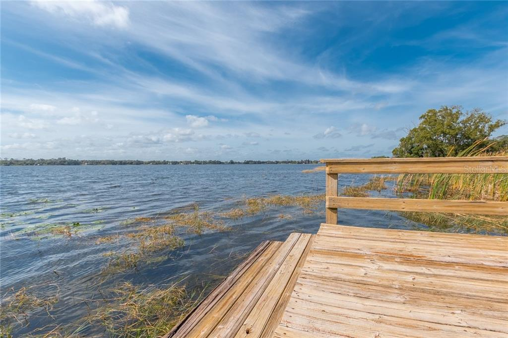 7360 LAKE OLA CIR Property Photo - MOUNT DORA, FL real estate listing